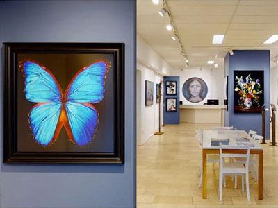 De Galerie Den Haag