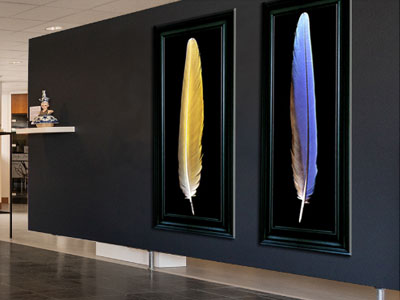 Exhibition Hedendaagse Kunst